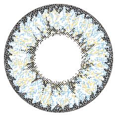 星あやAngel Color Dailiesエンジェルカラーデイリーズワンデーカラコン|VIRGIN QUARTERヴァージンクォーター