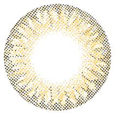 MEGBABYメグベイビーAngel Color Dailiesエンジェルカラーデイリーズワンデーカラコン|WORLD BROWN Richワールドブラウンリッチ